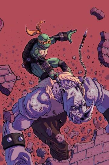 enemigos de las tortugas ninja personajes